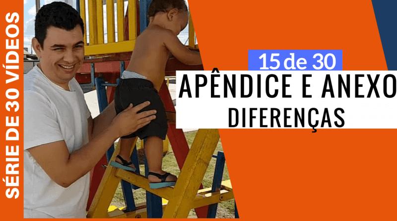 Diferença Entre Apêndice E Anexo