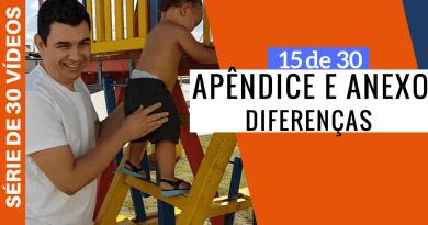 Qual A Diferença Entre Apêndice E Anexo